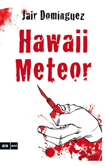 Hawaii Meteor